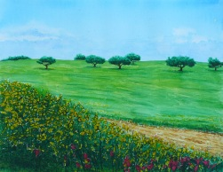 springtime_field_by_lord_makro.jpg